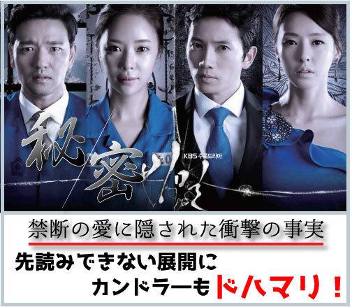 視聴 韓国 ドラマ 無料
